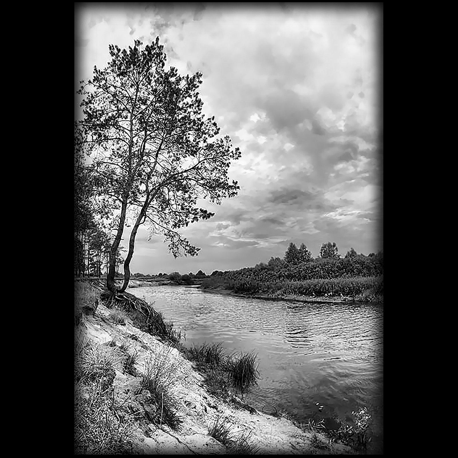 Картинка лисами, картинки с рекой на памятник